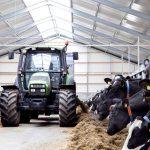 Nieuwbouw stal Friesland Allcad